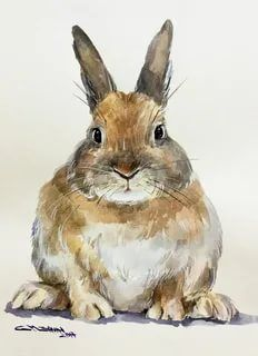 Watercolor Animals, Watercolor Cards, Watercolor Paintings, Watercolour, Farm Animals, Animals And Pets, Cute Animals, Bunny Painting, Painting & Drawing