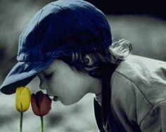 RENASCER PARA A VIDA        Sentir o gosto da vida,  pensar que em algum instante  ela pode apagar-se ou  simplesmente ser levad...