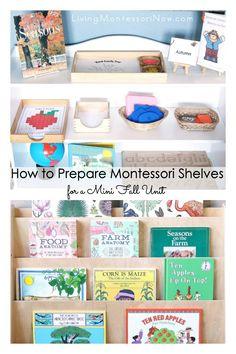 Ideas and resources on how to prepare Montessori shelves for a mini fall unit; includes book recommendations - Living Montessori Now #fall #minifallunit #homeschool #preschool #kindergarten