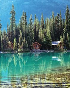 This Cabin In British Columbia Comes With Lake Views In The Rockies - Narcity Yoho National Park, National Parks, Mos Architects, Voyager Loin, Cabin In The Woods, Cabins In The Mountains, Lake Cabins, Lake View, British Columbia