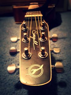 Long-view of my Seagull Guitar