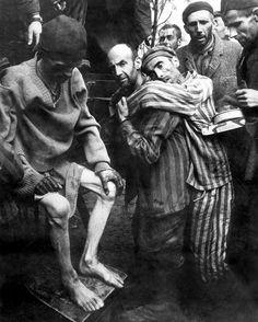 World War 2 Holocaust Memorial Day (Nazi Concentration Camp Pictures) Holocaust Memorial Day, Dramatic Photos, Interesting History, The Villain, World History, World War Two, Historical Photos, Wwii, Germany