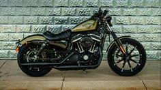 Harley Davidsen XL883