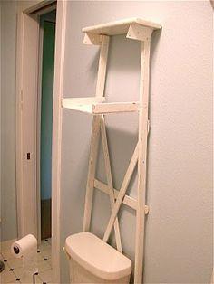 bathroom dress up.  wooden ladder behind toilet.