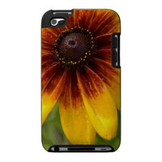 Beautiful Black Eyed Susan iPod Touch Case