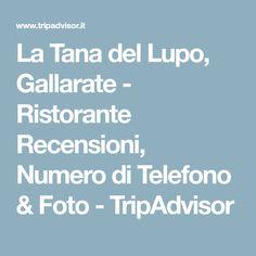 La Tana del Lupo, Gallarate - Ristorante Recensioni, Numero di Telefono & Foto - TripAdvisor