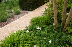Gardening Tips & Plant Care Advice Garden Design Ideas