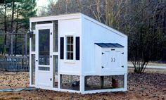 How to Build a Backyard Chicken Coop : HGTV Gardens