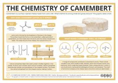 The Chemistry of a Camembert #science