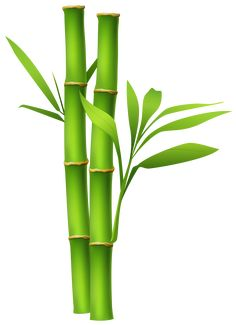Painted Bamboo, Bamboo Art, Free Flower Clipart, Bamboo Drawing, Bamboo Background, Coconut Milk Smoothie, Frida Art, Panda Birthday, Bild Tattoos