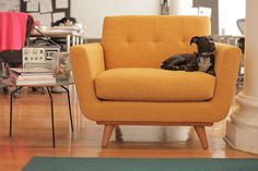 Etonnant Nixon Chair In Cordova Amber | Thrive Furniture Sofa Colors... | Pinterest  | Accent Decor, Mid Century Furniture And Mid Century