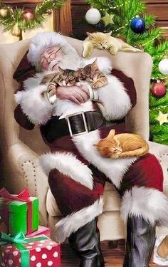❤️🧡💛💚🤍🖤 Christmas Card Wishes, Cat Christmas Cards, Christmas Envelopes, Merry Christmas To All, Holiday Greeting Cards, Christmas Images, Santa Christmas, Christmas Greetings, Christmas Wreaths