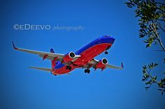 """""""Southwest Airlines"""""""