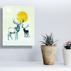 Did u know that we have small 5x7 canvas prints in our shop? These are great for small spaces little gifts or desk decorations. Check out the wide variety! //. #art #artwork #artistsoninstagram #artistsofinstagram #artist_sharing #dailyart #theartlovers #artspotted #artistic_nation #art_collective #wildlife #wildlifeart #wildlifeartists #conservation #animalcreatives #animalartists #etsy #etsyshop #shophandmade #shoppingonline #artonline #buyartonline