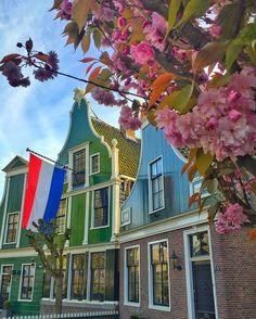 Zaanse Schans #Holland  @veronique.yang  #aplacetoremember #golden_heart . . .  #nederland #netherland #Belanda #nationaldestinations #ig_europe #wu_europe #theglobewanderer  #destinationearth #awesomepix #earthawesome #fantastic_earth #thebeautifultravels #earthlandscape #awesome_photographers by g0lden_heart