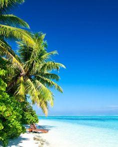 Diani Beach, Kenya, Top 100 Beaches in the World! Most Beautiful Beaches, Beautiful Places, Diani Beach, Relax, Nature View, Beaches In The World, Destin Beach, Walking In Nature, Tropical Paradise