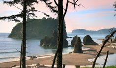 The shores of Washington may be lesser known than California's, but they are equally impressive. Home to the nation's only temperate rainforest, Olympic National Park is also the setting of Ruby Beach: a rocky, driftwood-laden alcove where seals often lounge about. Go in time for sunset when the landscape turns a pink hue. (There's a reason it's called Ruby Beach, people!) If you prefer your sand a little less wildlife-y, check out the 28-mile Long Beach. Grab a sloppy hoagie to go (the Big…