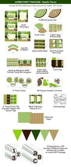 Reptile Themed Mega Party Package - Favors, Signs, Labels, Banner, Etc. - K050A