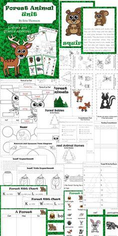 diagram of food web in coniferous forest so when i 39 m a teacher pinterest food webs. Black Bedroom Furniture Sets. Home Design Ideas