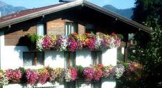 Noclegi w Austri, tania rezerwacja Mountain View, Hotels, Austria, Spa, Cabin, House Styles, Balcony, Garden, Plants