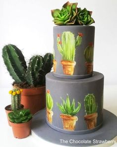 Painted Cactus Cake by Sarah Jones
