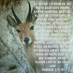 Afrikaans Quotes, Bible Love, Positive Thoughts, Positivity, Faith, Sayings, Godly Woman, Trust, Inspirational