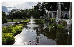 Untermyer Park II wallpaper