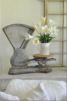My love for design and unique vintage finds has grown into a dear passion. Old Kitchen, Vintage Kitchen, Old Scales, Antique Bottles, Mid Century Style, Vintage Decor, Vintage Vignettes, Cool Items, Farmhouse Decor