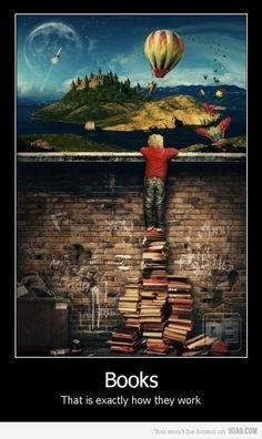 Les livres...c'est exactement comment ils fonctionnent.