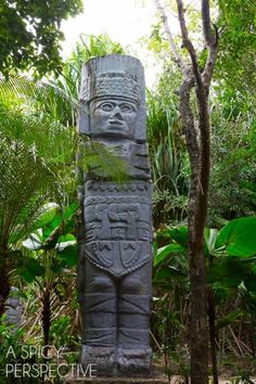 Mayan Ruins - Things to do in Cozumel Mexico #travel #mexico