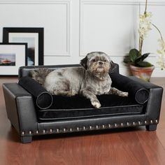 Noir Black Furniture Pet Bed | Overstock.com Shopping - The Best Prices on Enchanted Home Pet Pet Sofas & Furniture
