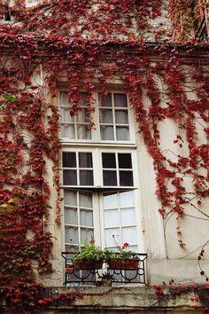 Fall in the Marais, Paris