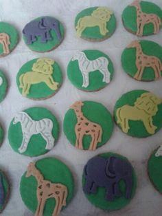 Safari kurabiye