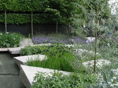 Ulf Nordfjell - Daily Telegraph Garden /Chelsea flower show 2009 - Triangular shapes in a garden add tension and interest.
