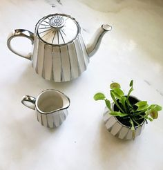 """officialaudreykitching: """"Found the coolest tea set but I planted a Venus fly trap in the sugar bowl. """""""