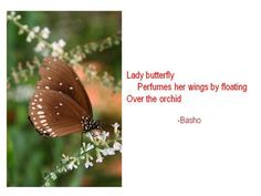 Haiku Poems Examples | haiku+poems+about+nature