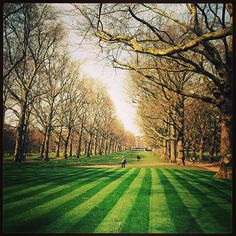 Green Park, London. What do you love most about London?