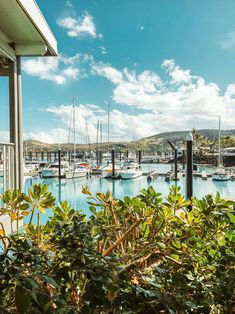 Romantic Getaways, Romantic Travel, Hamilton Island, Yacht Party, Airlie Beach, Surfboard Art, Gap Year, Island Girl, Great Barrier Reef