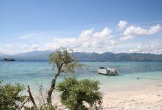 Eco Travel Green Carbon Offset Sustainable Tourism Eco Resort | Yogi Times