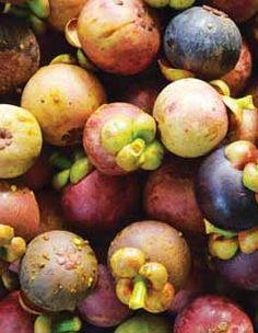 There are dozens of farmers markets, big and small, in Hawaii, each one unique in its offerings. Even though you may be on vacation and dining out regularly, fresh fruit, pastries, preserves, coffee and macadamia nuts will no doubt make for tasty snacks and gifts to take home.