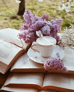 Spring Aesthetic, Book Aesthetic, Aesthetic Images, Aesthetic Vintage, Lavender Aesthetic, Purple Aesthetic, Flower Aesthetic, Coffee Photography, Floral Photography