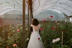 Girls Dresses, Flower Girl Dresses, Photo Ideas, White Dress, Roses, Weddings, Wedding Dresses, Flowers, Photos