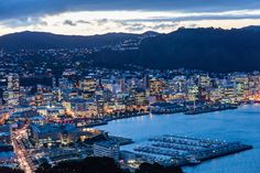 Wellington City, NZL
