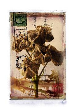 Kevin Sprague - Golden Hill Golden Hill, Altered Art, Mixed Media, Collage, Artist, Prints, Collages, Artists, Collage Art