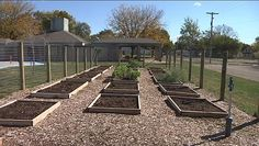 "Bosch GW is supporting community garden in Peoria's South Side known as the ""food desert"""