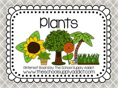 Plants Pin Board by The School Supply Addict
