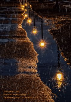 Rain Photography, Aesthetic Photography Nature, Landscape Photography, Good Night Gif, Good Night Image, Rain Gif, Fall Tree Painting, Rain Pictures, Smell Of Rain