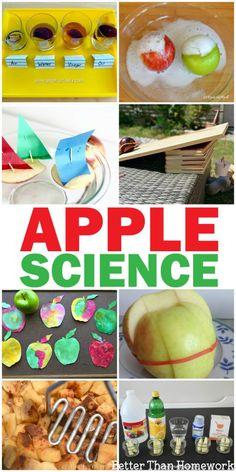 Science Activities For Kids, Kindergarten Science, Autumn Activities, Science For Kids, Science Projects, Summer Science, Elementary Science, Science Classroom, Science Kits