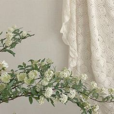 Find images and videos about white, aesthetic and flowers on We Heart It - the app to get lost in what you love. Flower Aesthetic, White Aesthetic, Aesthetic Space, Aesthetic Photo, Softies, No Bad Days, Green Gables, Aesthetic Pictures, Wall Collage