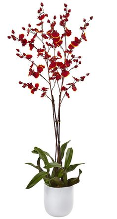 Oncidium Dancing Lady Orchid Artificial Holiday Flowers | 36 inches